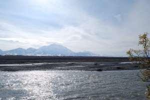 Blick auf den Denali vom Ende des McKinley River Trail